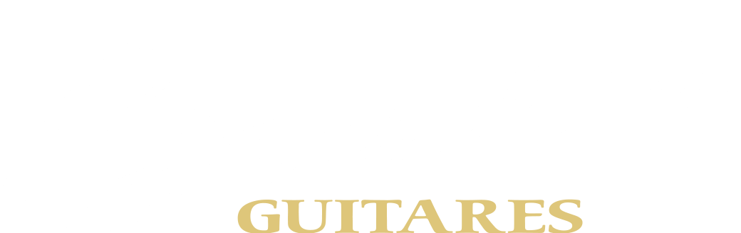 Logo Guitare Boucher